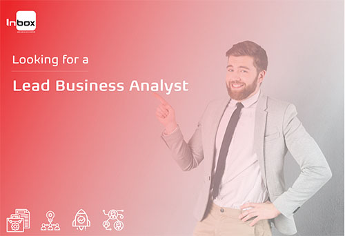 Lead Business Analyst